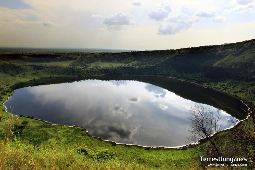 Viajes-uganda-kibale-70