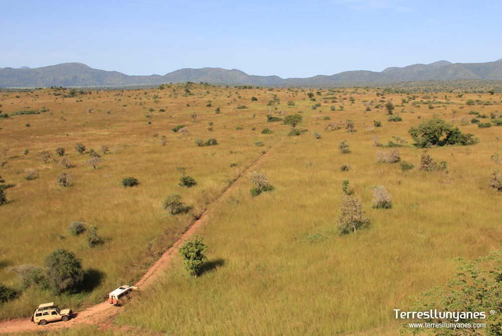 Viajes-uganda-kidepo-38