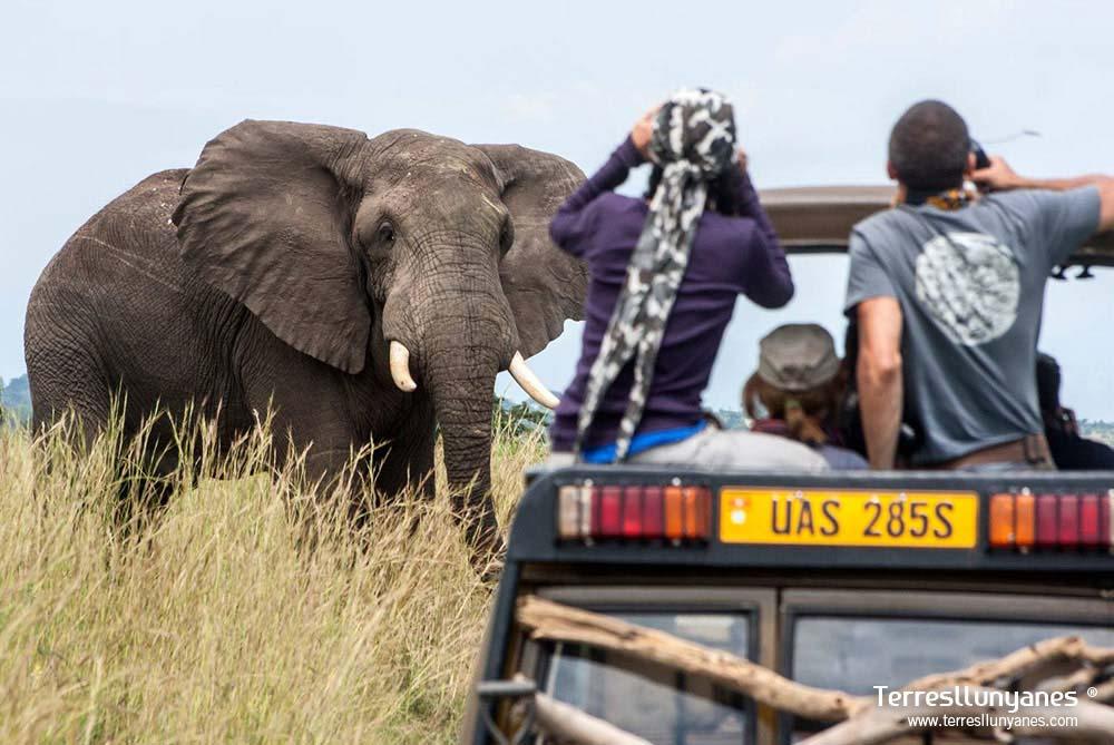 Viajes-uganda-murchison-08