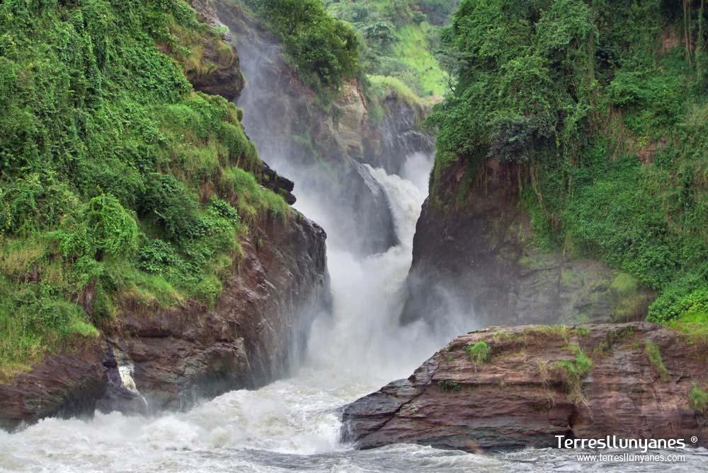 Viajes-uganda-murchison-55